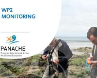 Marine Monitoring by Wildlife Trusts along the South Coast of England