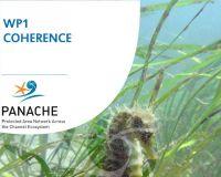 Evaluation de la connectivité planctonique du réseau d'aires marines protégées en Manche