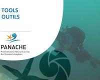 Guide pour le suivi sur le littoral pour les sciences participatives